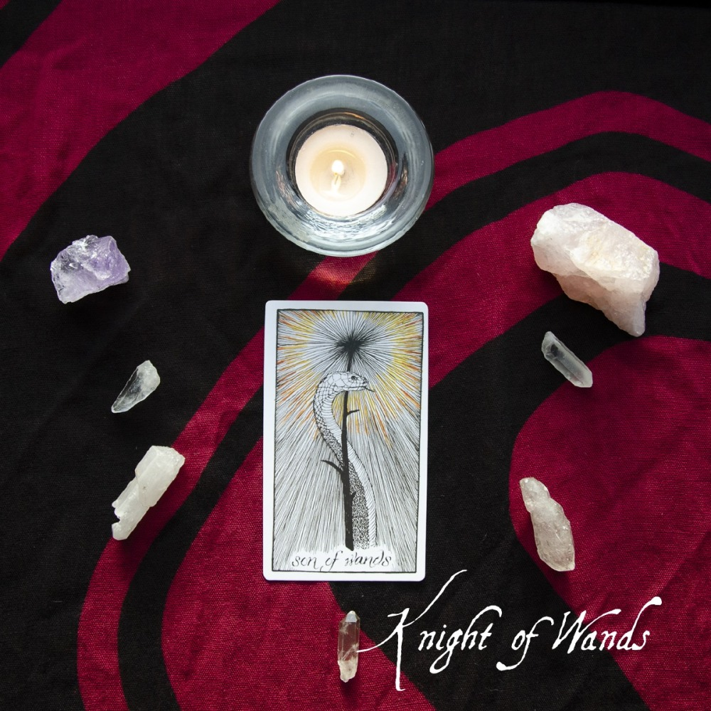 Page of Wands (1)